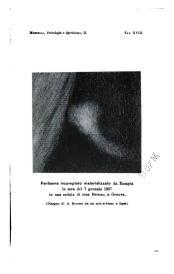 Morselli Palladino form 2